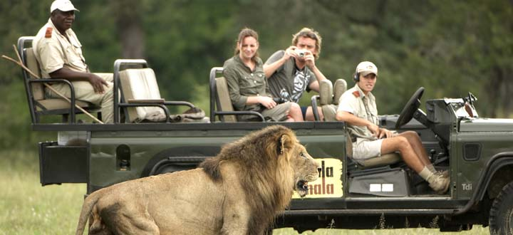 Africa; South Africa; Mala Mala Game Reserve; Main Camp; Game Drive