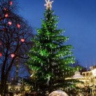 Our Favourite Christmas Markets