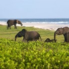 Unlikely holiday destinations seeing growth