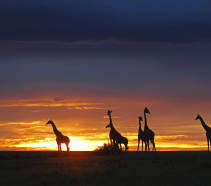 Best sunsets and sunrises in the world