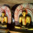 Elephants, Beaches & Temples: Sri Lanka Tour