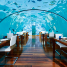 """WOW"" Factor Restaurants from Around the World"