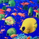 Top 5 Diving Destinations