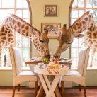 5 Spectacular Restaurants Around The World